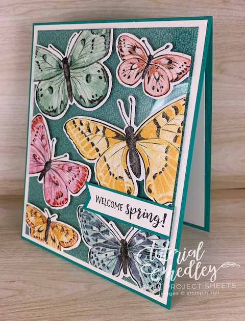 New in the 2021/2022 Stampin' Up! Annual Catalog! This is the Butterfly Brilliance bundle available NOW with some exclusive Designer Paper that you won't want to miss out on. #thestampcamp #stampinup #butterfly
