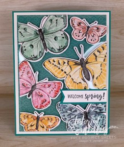 Floating Front Card with Butterfly Brilliance