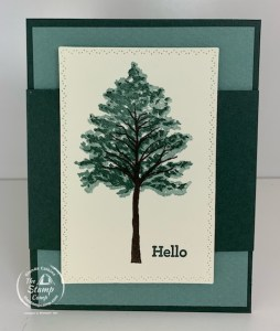 The Stampin' Up! Beauty of Friendship is Perfect for Today's Fun Fold!
