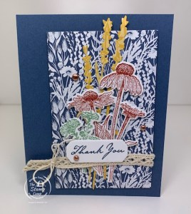 Where Did I Get The Inspiration For This Nature's Harvest Card?