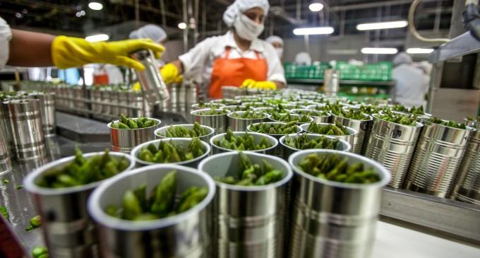 Resultado de imagen para La agroindustria