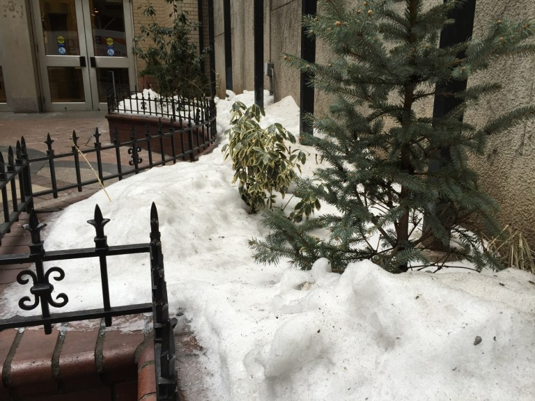 snow photos stock