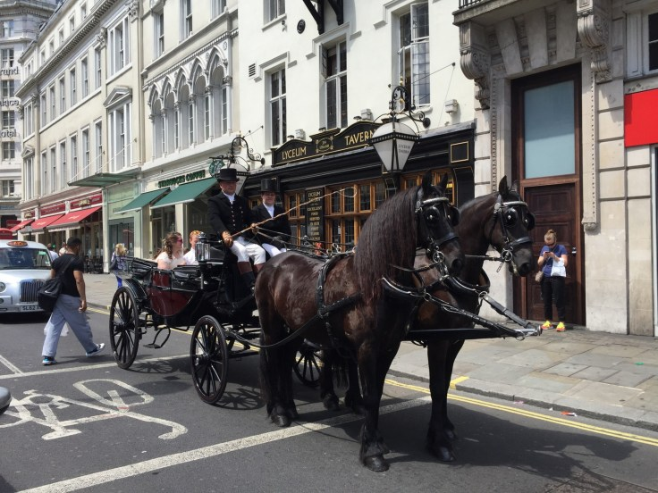 Horse & Carriage outside Lyceum Tavern