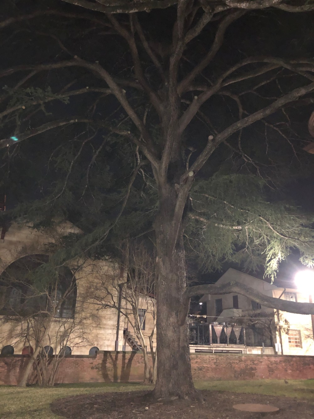 Ghost Tours Austin