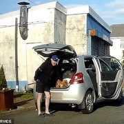Gregory Phillips, 40, was filmed violently handling and striking the dog on Pentre Street, Glynneath, Neath, South Wales