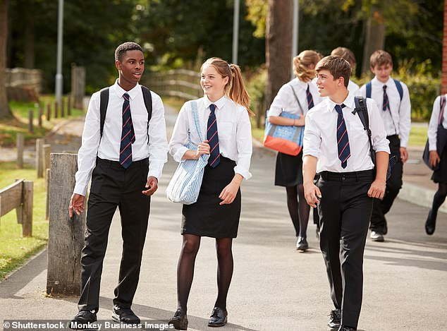 A government advisor has argued fora 'whole series' of circuit breakers planned around when schools break up to cause minimum disruption to students (stock photo)