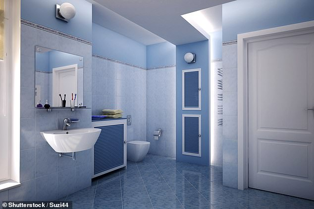 Blue is the perfect colour for your bathroom, Alison said, explaining it conveys a sense of cleanliness and adds an 'anti-bacterial' feel to your water room (stock picture)