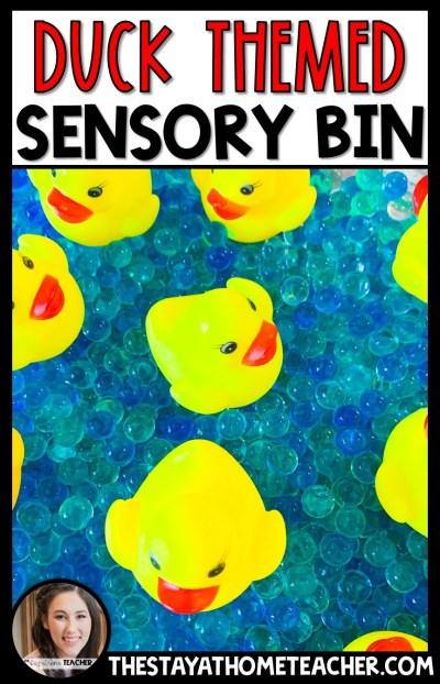 Duck Sensory Bin