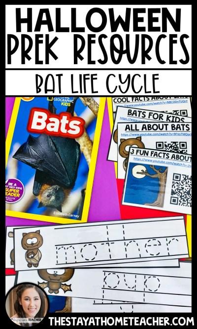 bat life cycle study