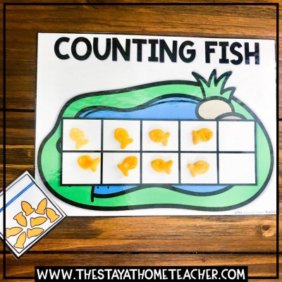 goldfish counting