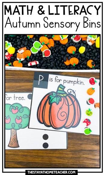 fall math and literacy sensory bins pin