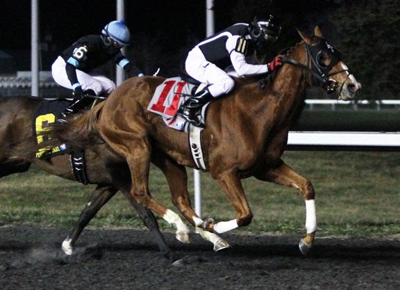 DAC | The Prairie Bayou - 21st Running | 12-19-15 | Race 04 | TP