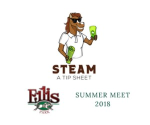 steam_ellis_logo