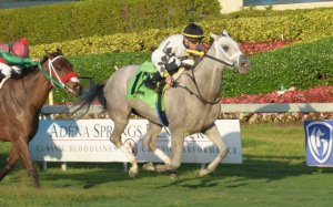 nikkis_cause_gulfstream_park_photo