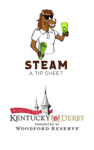 steam_road_to_the_derby_logo