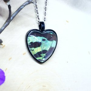 Madagascan Sunset Moth Black Heart Necklace