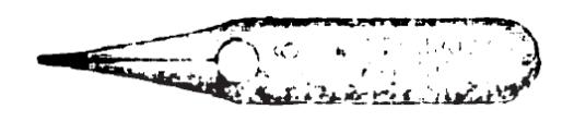 ESTERBROOK 98 CORRESPONDENCE PEN 1883 img