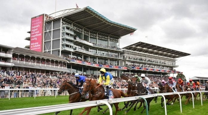 Runners & Riders – Horse racing tips for Thursday 22nd August – The Steeple Times' horse racing tips with an analysis of the top tipsters and their selections for today's racing at the Ebor Festival.