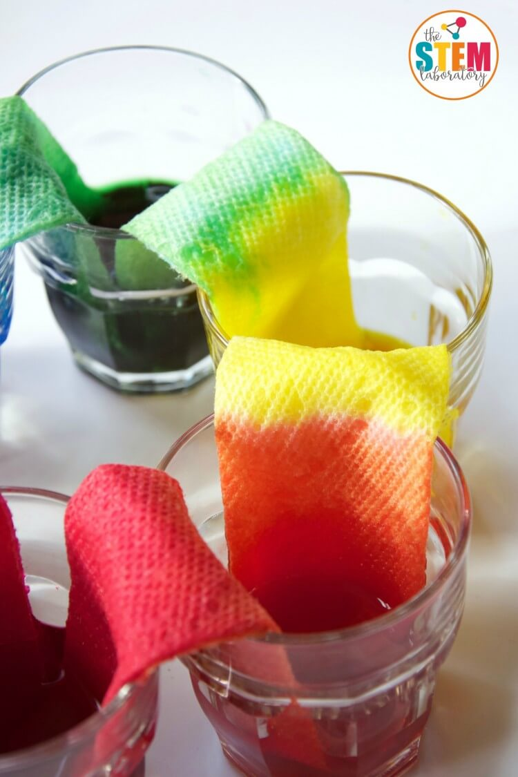 medium resolution of cool science experiment for kids make a walking water rainbow