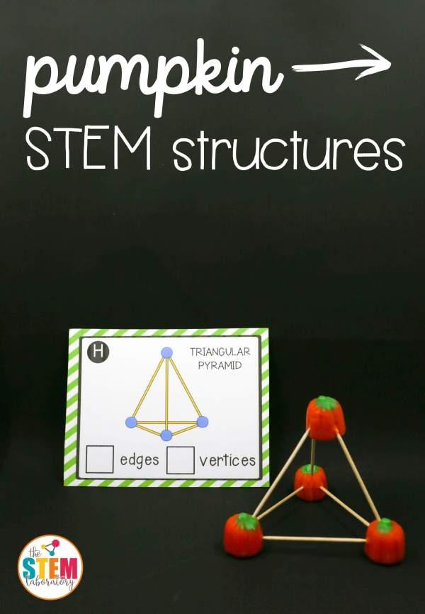 Pumpkin Stem Structures - Laboratory