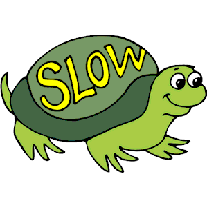 Slow Turtle Painter