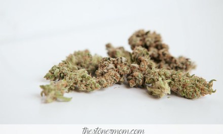 Weed Review Wednesday: Mazar I Sharif- to sleep, to dream, to get stoned