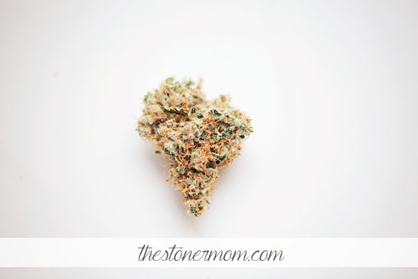 Weed Review Wednesday: Tangerine Kush