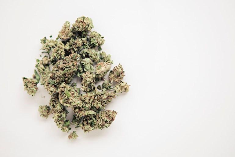 AK-47 marijuana strain