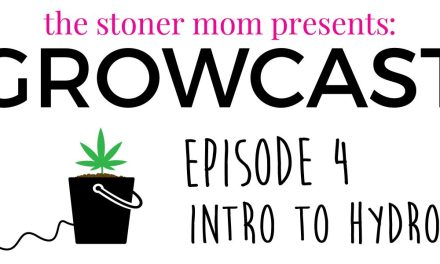 GrowCast Episode 4: How to Grow Hydroponic Weed