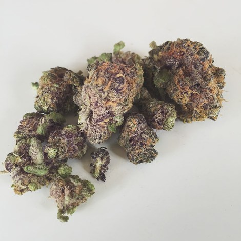 Granddaddy Purple