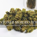 Cannatonic Sour Tsunami Strain Review | The Stoner Mom Reviews