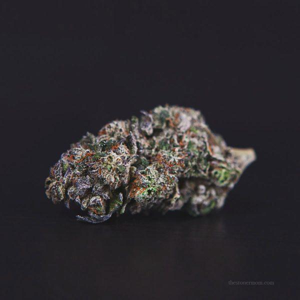 Gelato cannabis bud