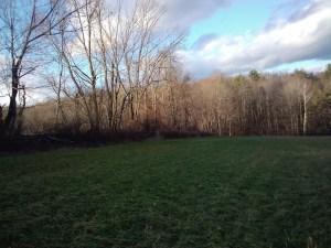 2011-11-18 15.37.57_Vermont_US