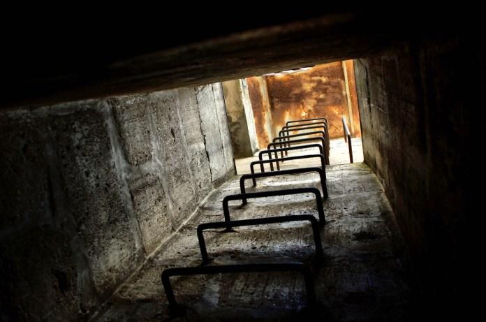 bunker, trump, cowers