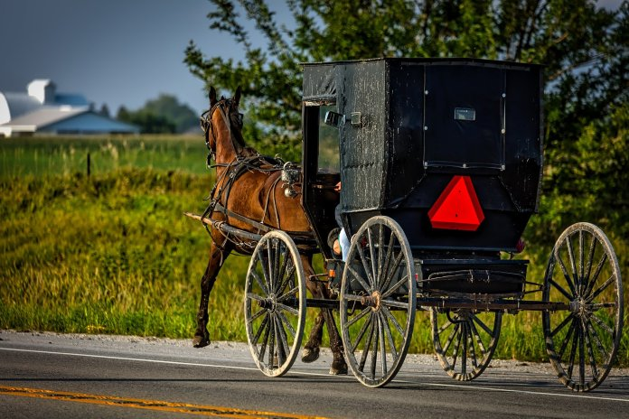 Buffett acquires, Horse and buggy