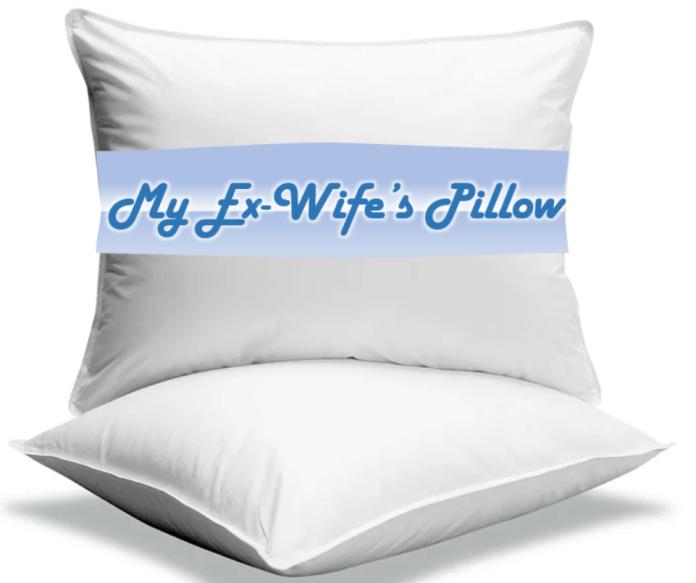 Jeff Bezos Pillow