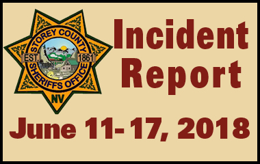 SCSO Incident Report June 11th - 17th