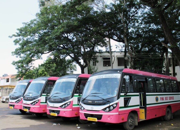 city-pink-buses