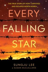 Every Falling Star by Sungju Lee