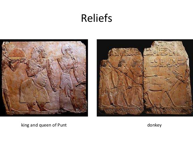 """The Queen of Punt, and the """"poor donkey"""" that had to carry her"""