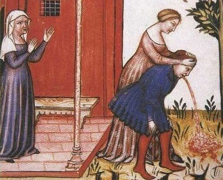 "Manuscript page from the ""Tacuinum Sanitatis,"" 14th cent."