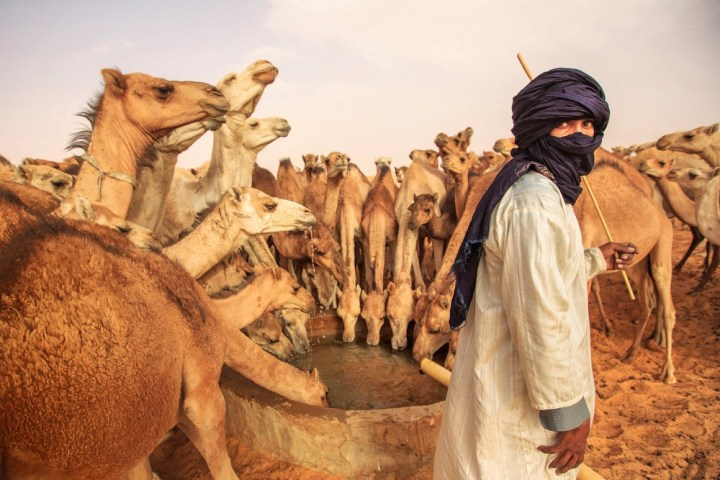A modern Mauritanian man waters his camels at a desert well. Photo copyright Mitchell Kanashkevich.