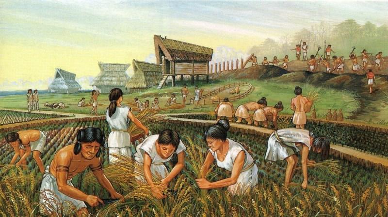 Neolithic rice farming, circa 3000 BCE