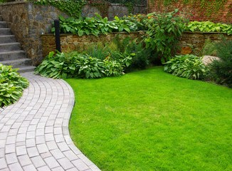 type of lawn