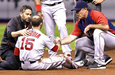 pedroia getty images