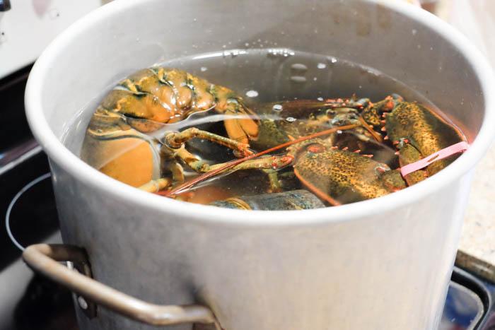 Lobster Roll Recipe 2