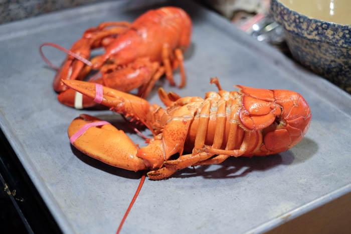 Lobster Roll Recipe 4