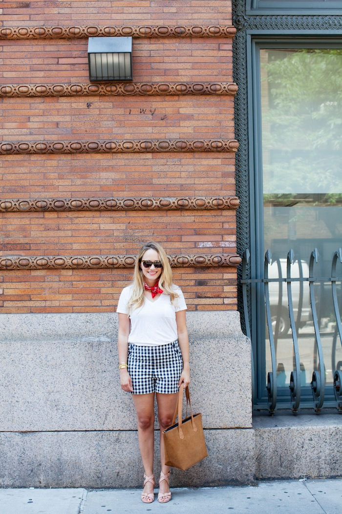 Gingham Shorts -- The Stripe.