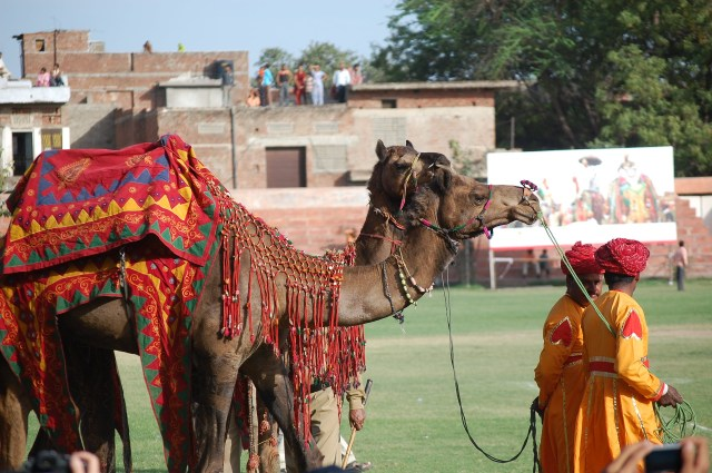 jaipur-2929523_1920