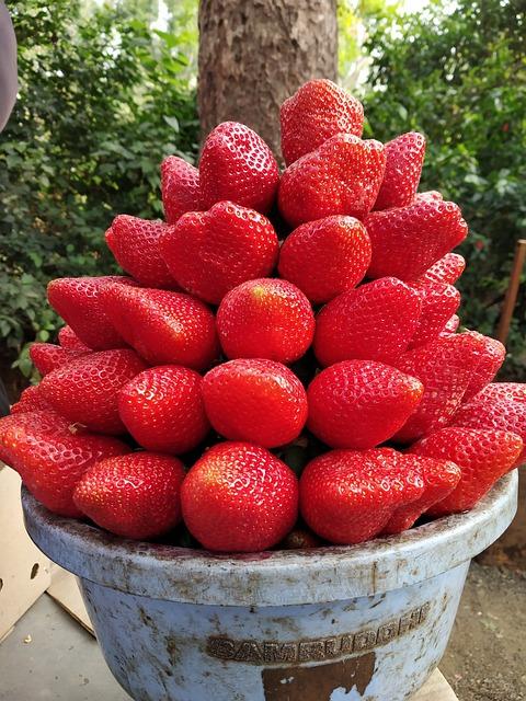 strawberry-3879956_640